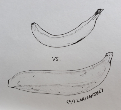 banana or plantain